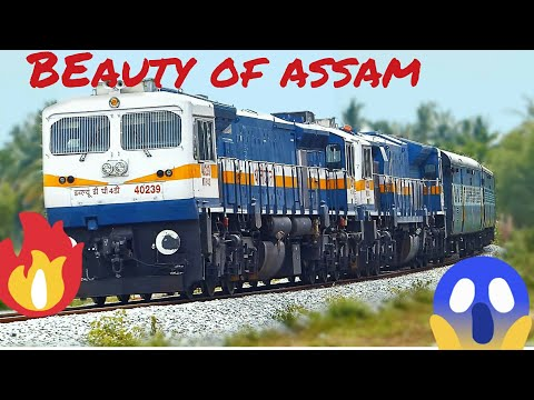 Short Journey Compilation In The Hills Of ASSAM. Between Guwahati And Silchar.