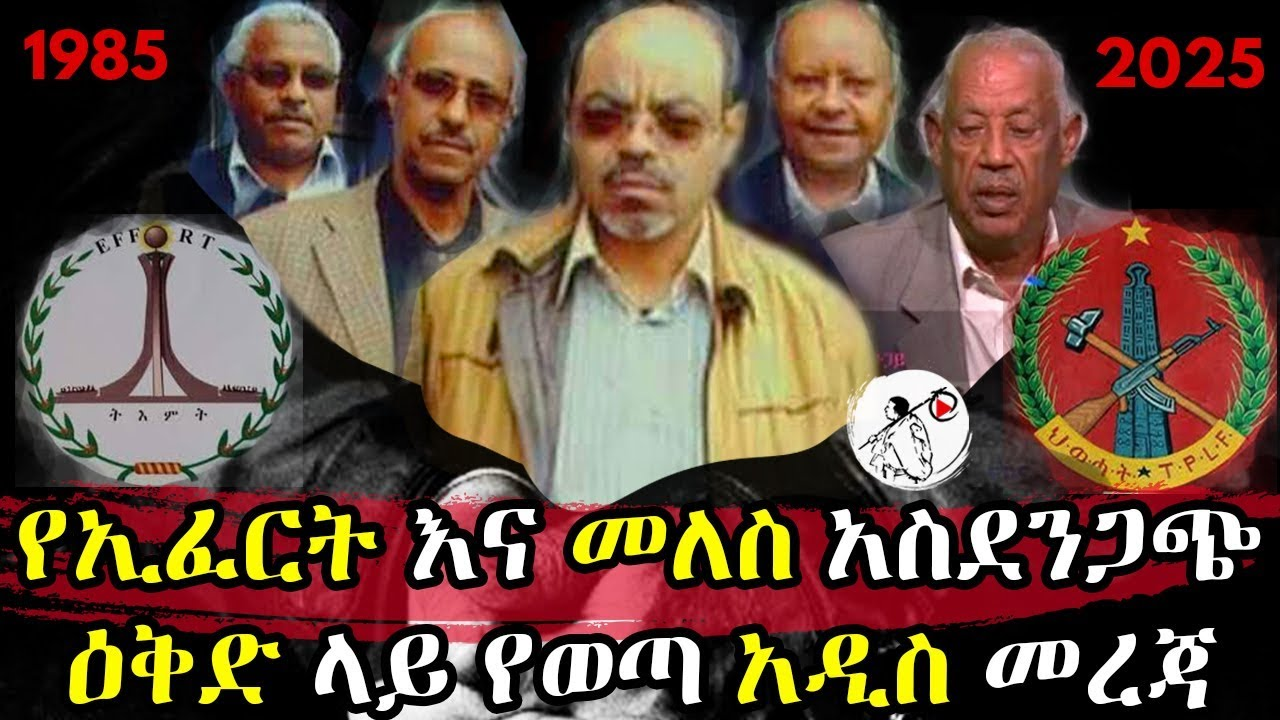 New information provided in the EFERT and Meles Plan