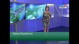Вести-Хабаровск. Экономика