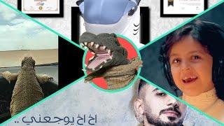 التمساح الحلقة ١٠٥:القرشية الصفينييه  | Temsa7LY