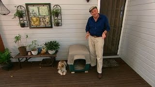 Better Homes And Gardens - Dog Kennel Training