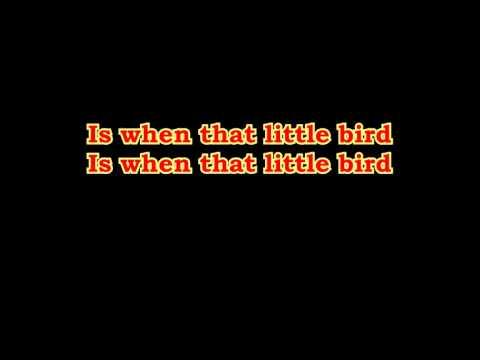 Little Bird - Ray Phillips & Zalatnay Sarolta   lyrics on screen