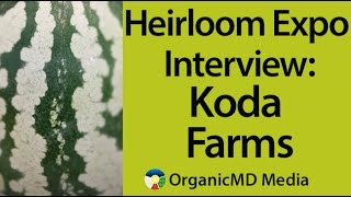 Best Rice You Can Buy - Really We Mean It! - Our Interview with Koda Farms