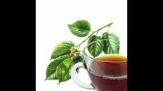 Slippery Elm Herb Tea Health Benefits
