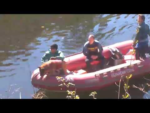 Peinan el río Miño en busca del melidense desaparecido en Belesar