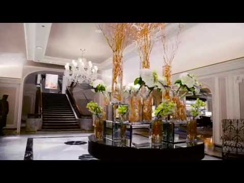 Sky High Luxury In The Heart Of Chicago | Four Seasons Hotel Chicago