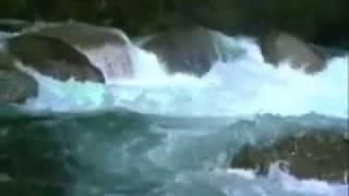 Uống nước bên bờ suối - Lê Uyên Phương / Khánh Ly
