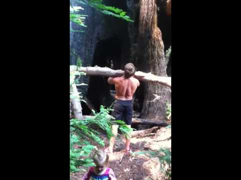Redwood WOD in Big Sur with Corbin Matise