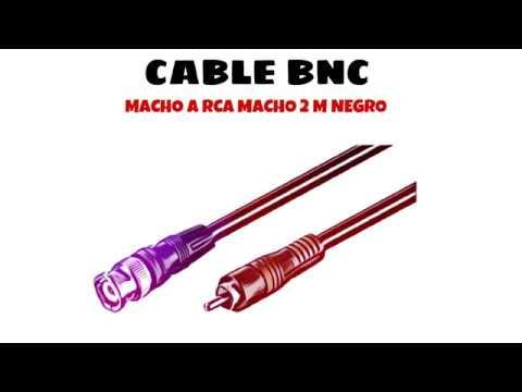 Video de Cable BNC macho a RCA macho 2 M Negro