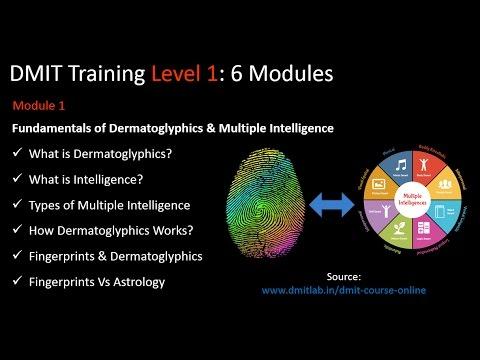 DMIT Course Online, DMIT Training, Fingerprints Analysis