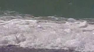 Такое разное... Чёрное море(снималось мобильником 15 - 25 мая 2010 в Крыму, Николаевка фото- и видео-съёмка , монтаж и озвучка - мои, leksiya83..., 2010-06-02T05:16:11.000Z)