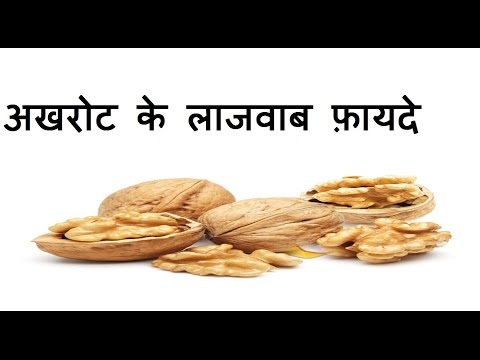 Akhrot Ke Fayade, अखरोट के फ़ायदे, Health & Beauty Benefits of Walnut in Hindi