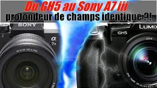 Du GH5 au Sony A7 iii / Profondeur de champs identique full frame et micro 4/3 ???
