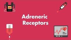hqdefault - Dopamine Receptors In The Kidney