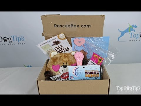 Rescue Box Dog Subscription Box Unboxing
