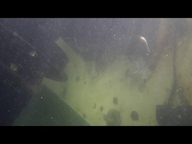 Neptune 06/15/20