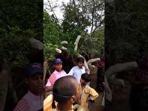 Brandaban yatra 2017 Radha Krishna mandir bandwa manikpur(12)