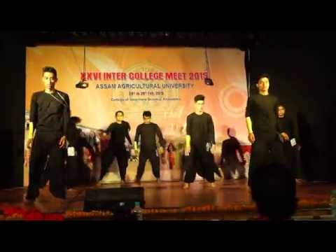 abhi mujh me kahin dance by vaterinary collage  choreogaphy by Santosh & group