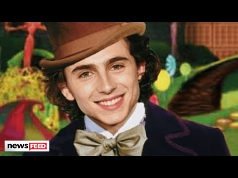 Timothee-Chalamet-Playing-Willy-Wonka-Has-Fans-BUZZING