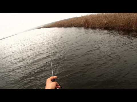 одесская федерация рыболовного спорта