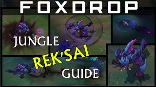 In-depth Diamond Jungle Rek'Sai Guide