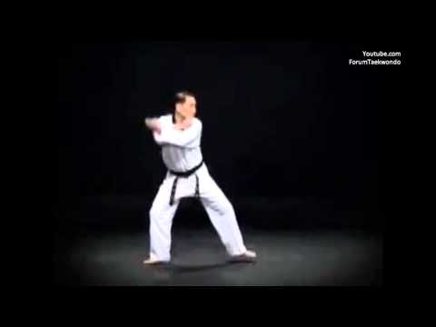 2 x Poomsae Pyongwon (Taekwondo pattern) 4. dan