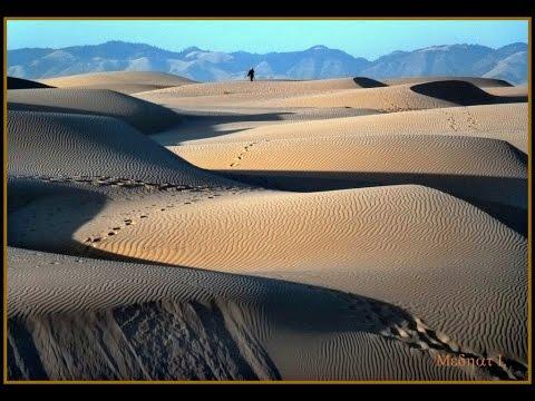 Pismo Beach Dunes