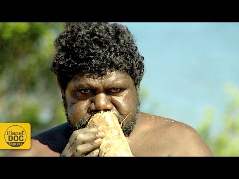 Didgeridoo Sound | Australian Instrument