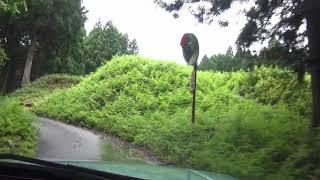 いつの間にか復旧の三重県道42号線 小川内神社から