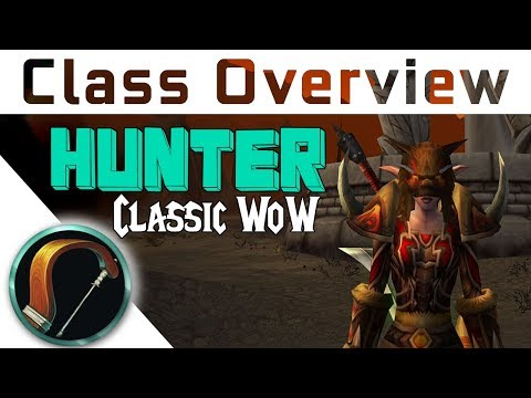 Vanilla Class Overview - HUNTER - Which class to choose in V