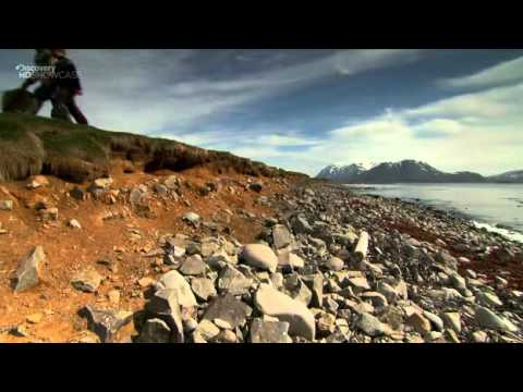 Discovery Channel Ultimate Journeys Iceland HDTV XviD TERRA