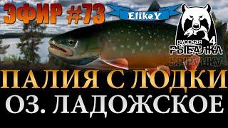 Поохотимся за Палией Рыбалка на Техасс Озеро Ладожское Русская Рыбалка 4 ЭФИР 73