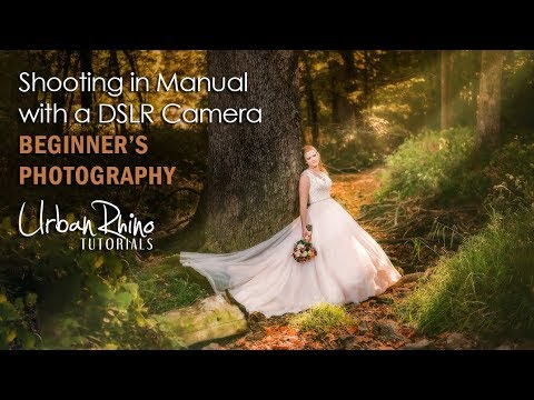 Shooting in Manual with a DSLR Camera: Beginner's Photography