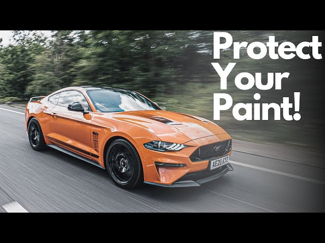 Protect Your Paint! | Paint Protection Film | Ford Mustang