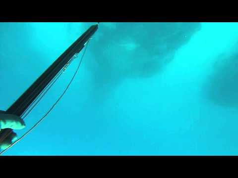 Spearfishing 2015 Cabo Verde