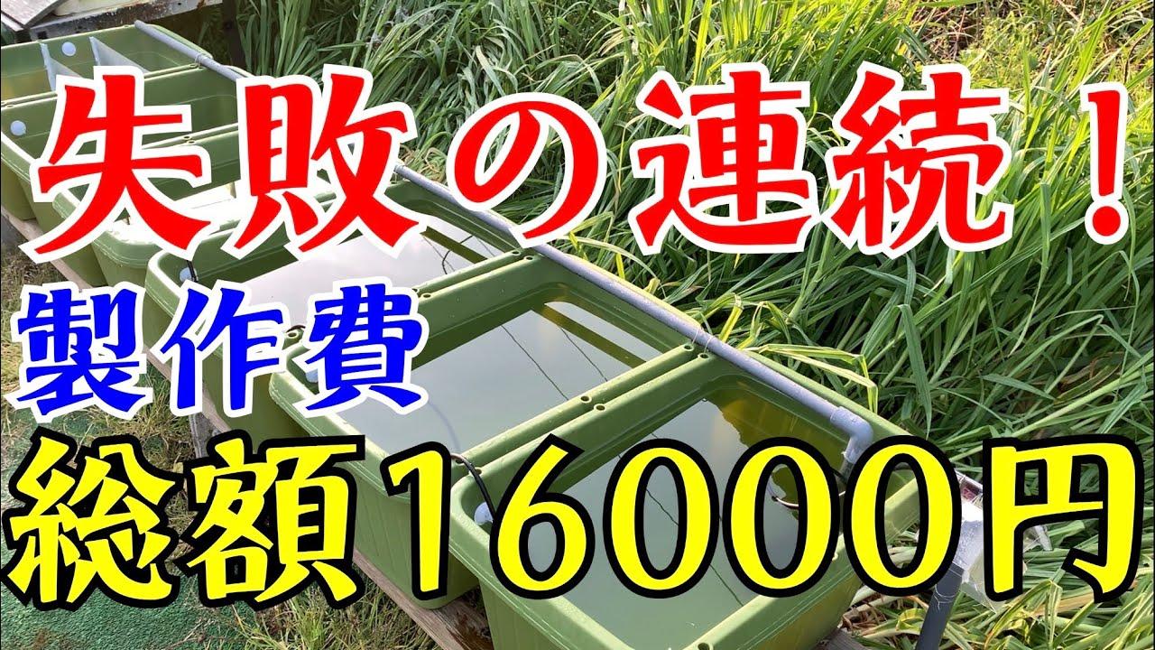 【メダカ水槽】連結水槽エアーリフト式循環装置を作ってみた!