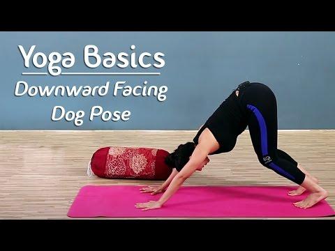 Downward Dog Pose Step By Step | Adho Mukha Shvanasana | Yoga For Beginners Yoga With AJ