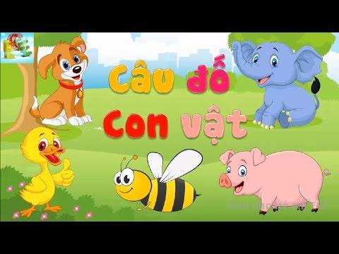 Câu đố vui cho bé về con vật có đáp án | đố bé con gì dạy bé học con vật | Giáo dục trẻ em ECE