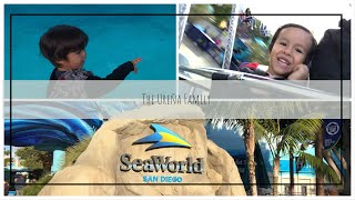 1st video of 2019 at SeaWorld