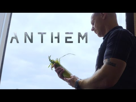 Anthem - Rising to New Heights Corn Maze Teaser Trailer