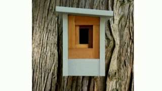 Contemporary Bird Houses