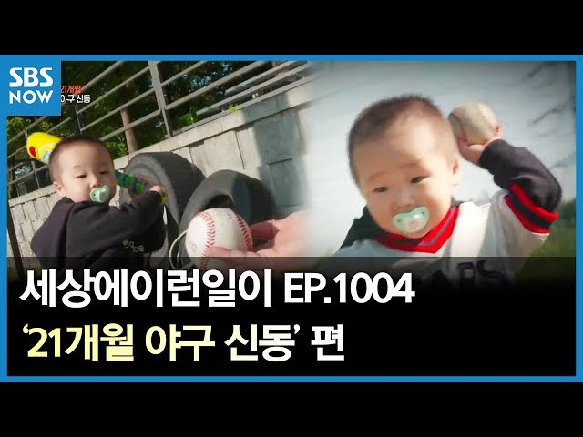 SBS [순간포착 세상에 이런일이] - 21개월 야구 신동/ 'What on Earth!' Ep.1004 review
