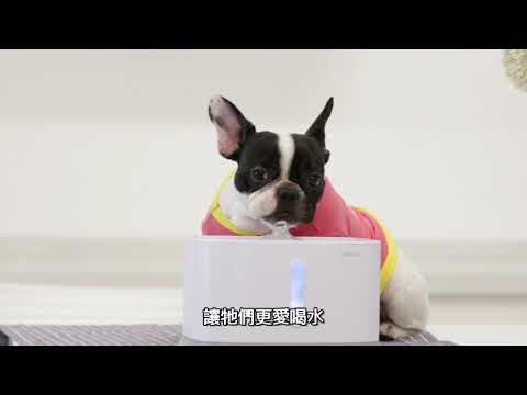 派旺 PETWANT 2.7L 智慧循環寵物活水機 W1-TW_依照貓、狗飲水習慣設計兩種出水柱