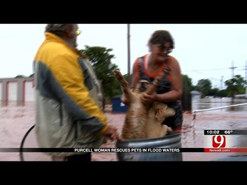 Purcell Woman Rescues Pets In Flood Waters