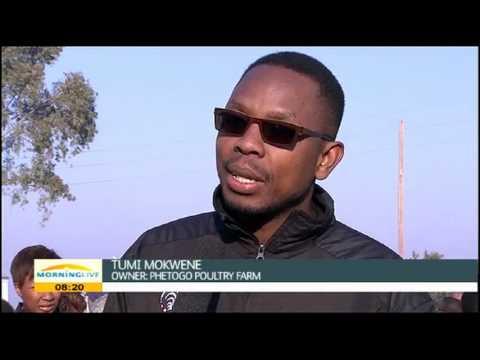 Tumi Mokwene, owner of Phetogo Poultry Farm  #Agristars