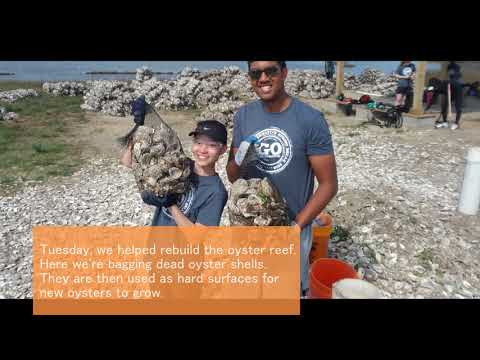 UT Dallas ASB 2018 - Environmental Conservation