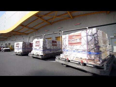 Qatar Airways Delivers 300 Tons Of Medical Supplies To China