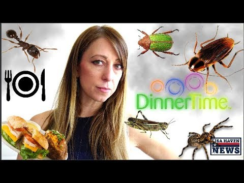 Eerie Map Signals Major Shortages Coming To Grocery Stores, As Globalists Push Insect Feast…