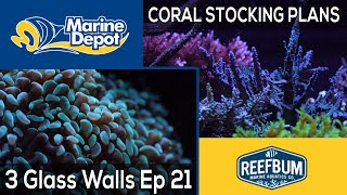 The Coral Plan: 3 Glass Walls with Reefbum Part 21