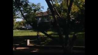 El Cortador de Césped (Stephen King) 1992 - Español Castellano -  The Lawnmower Man